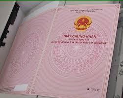 Ngân Hàng VIBI Thanh Lý, Hỗ Trợ Cho Vay Mua Đất Bình Chánh Gần Bến xe quận 8