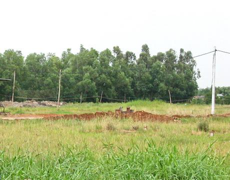 Cần bán gấp lô đất Củ Chi 550m2 – xã Trung Lập Hạ, Củ Chi